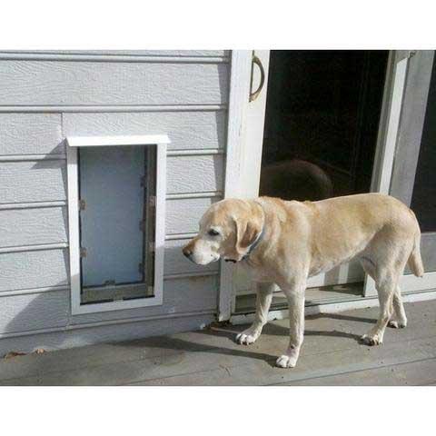 Pet Doors